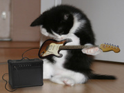 Самара - гитара