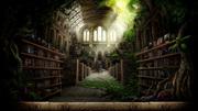 Библиотекарь,  стабильность,  надежность