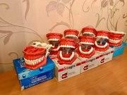Фантомные модели стоматологических челюстей