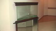 продаю 2 аквариума; 1-180л. за 20000р,  2-160л. за 7000р, возможен торг.
